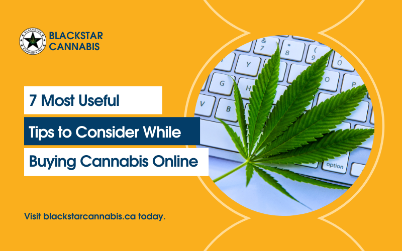 7 Most Useful Tips to Consider While Buying Cannabis Online