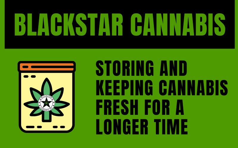 How to Store and Keep Cannabis Fresh